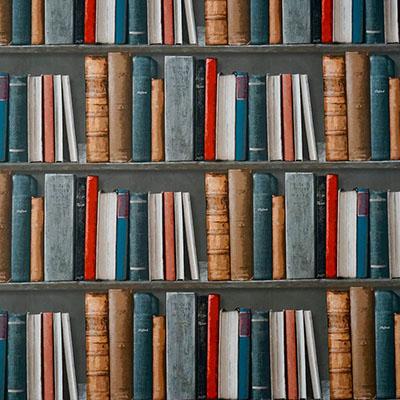 Revisão da Literatura com Nvivo e Endnote